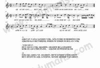 Copculer-Keman-Notalari