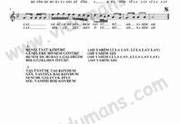 Deniz Ustu Kopuru-Keman-Notalari
