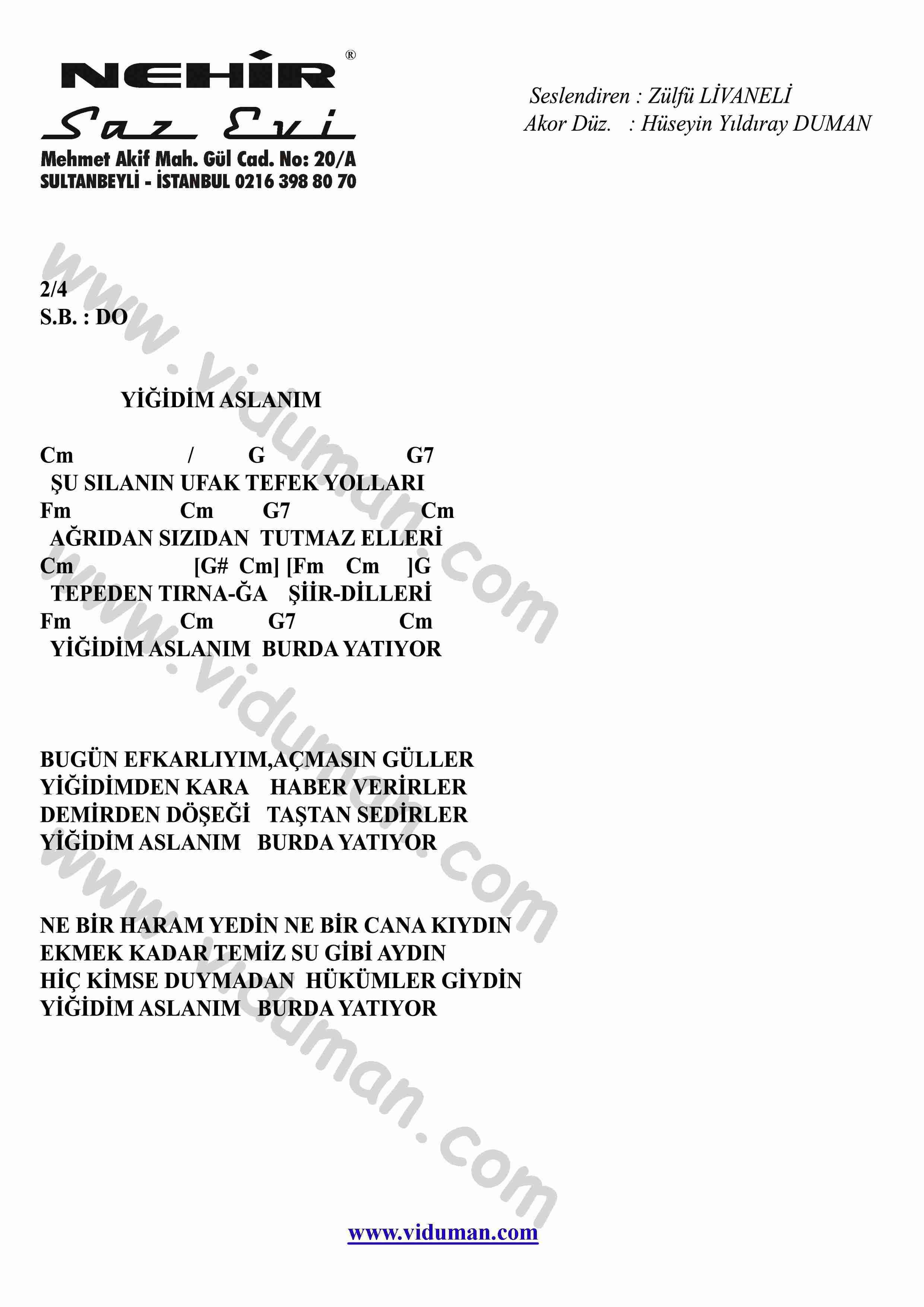 Yigidim Aslanim