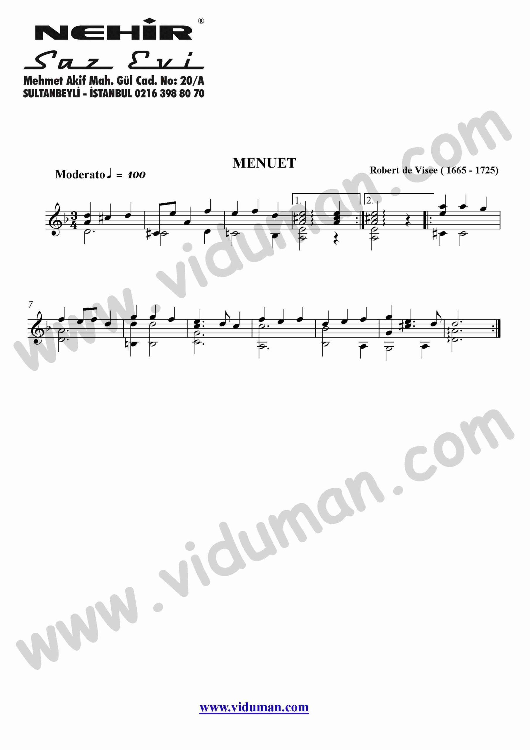17- Menuet (Robert De Visee)