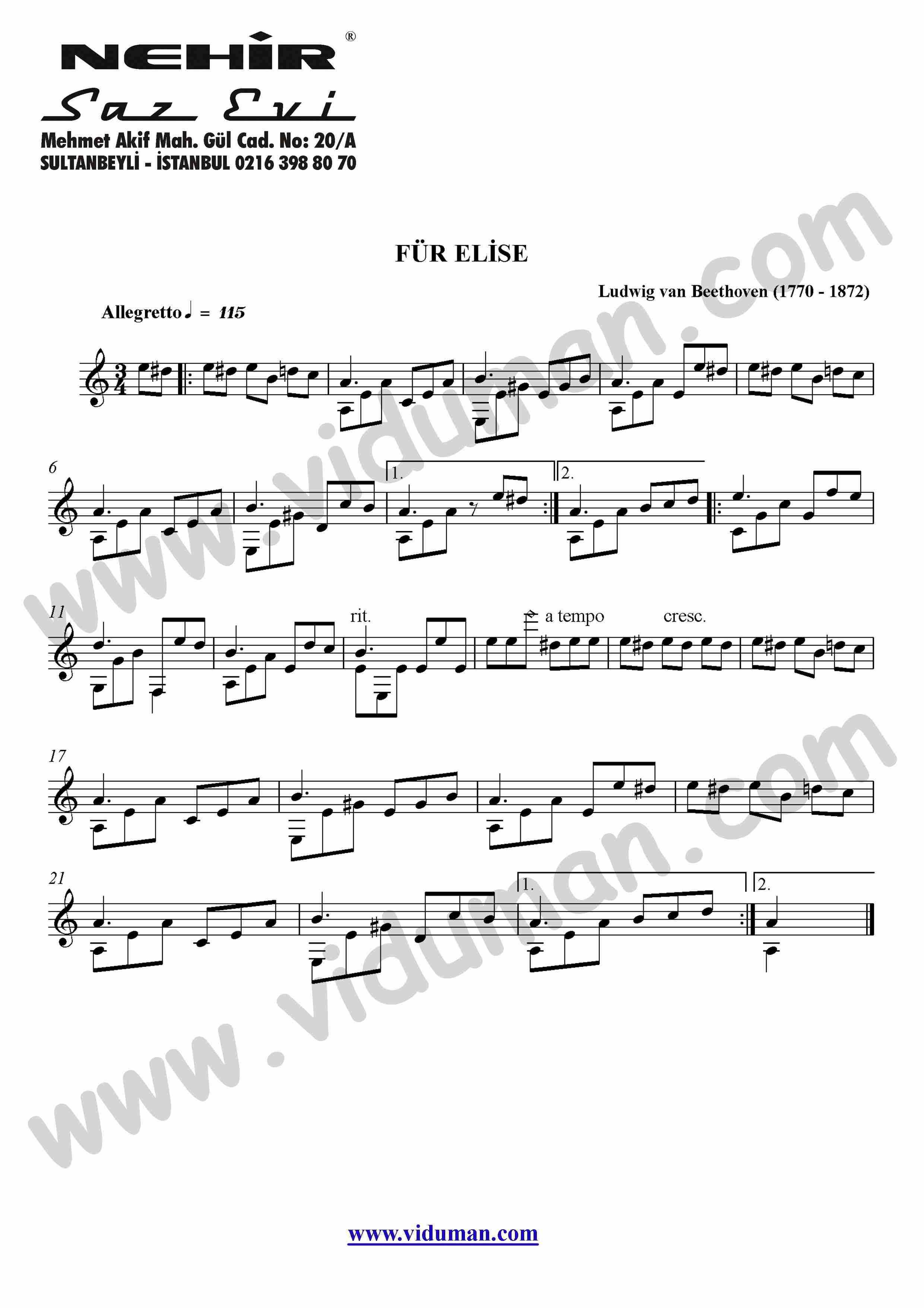 20- Fur Elise (Ludwig Van Beethoven)