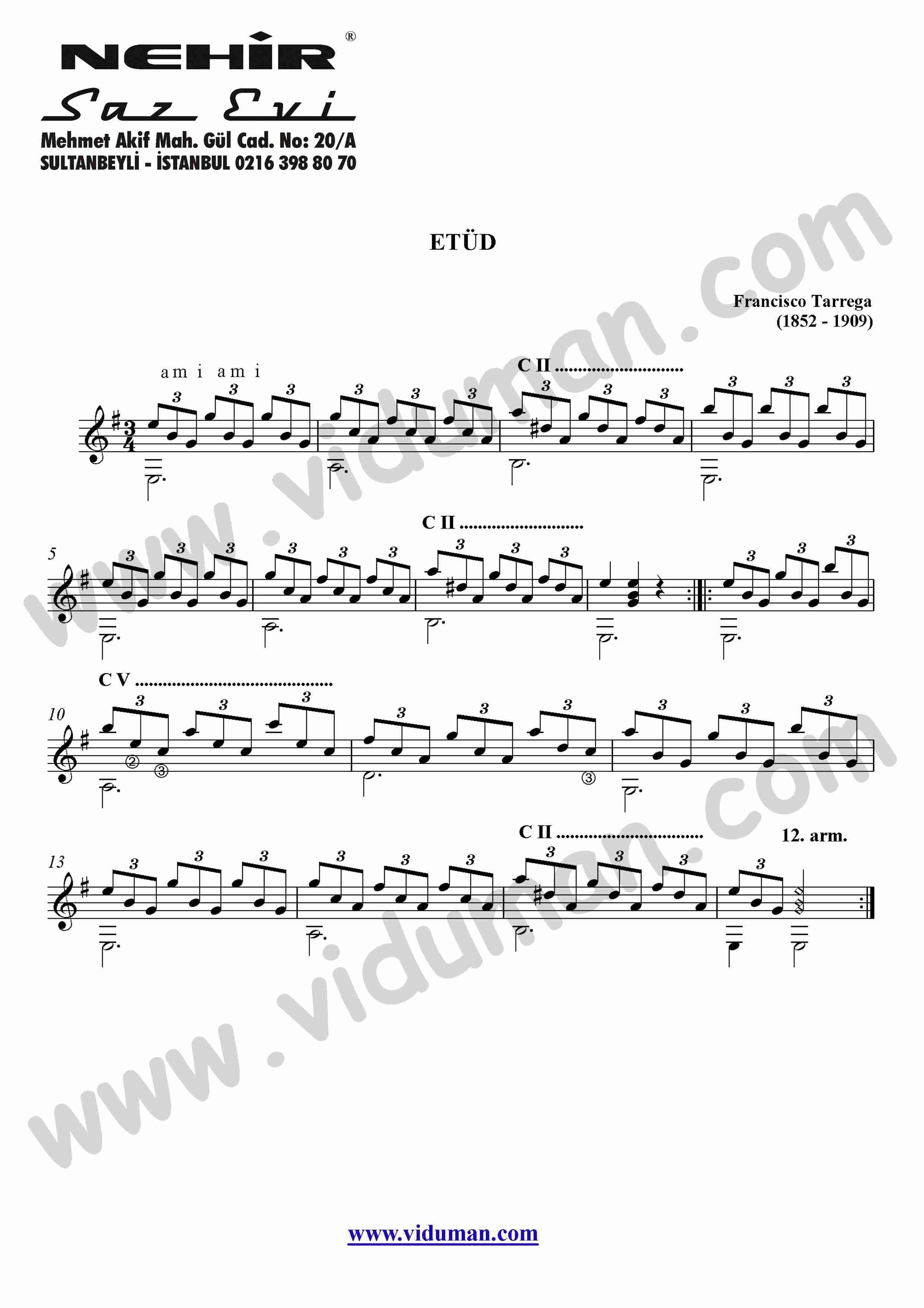 31- Study In Mi Minor Etud (Francisco Tarrega)