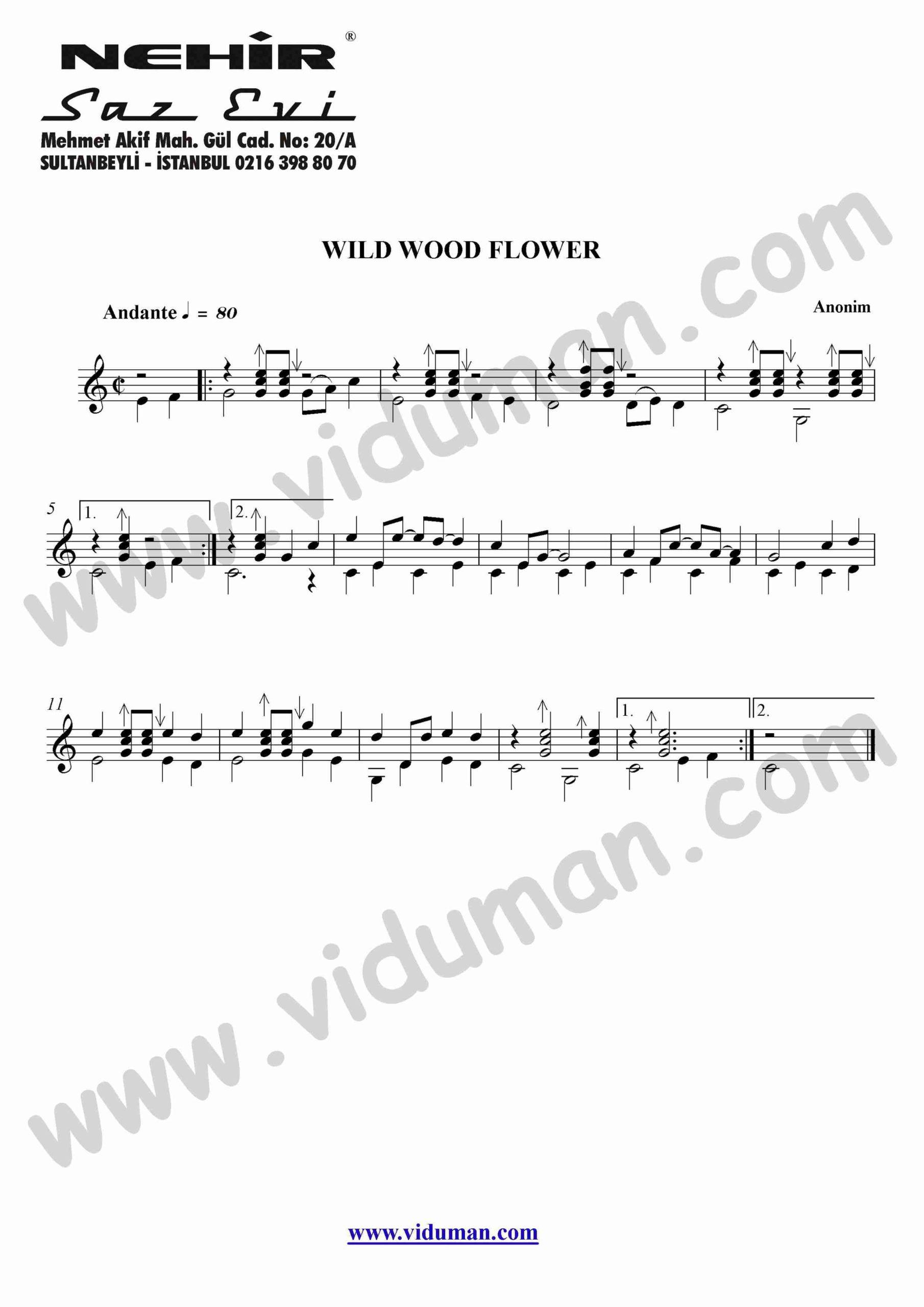34- Wild Wood Flower