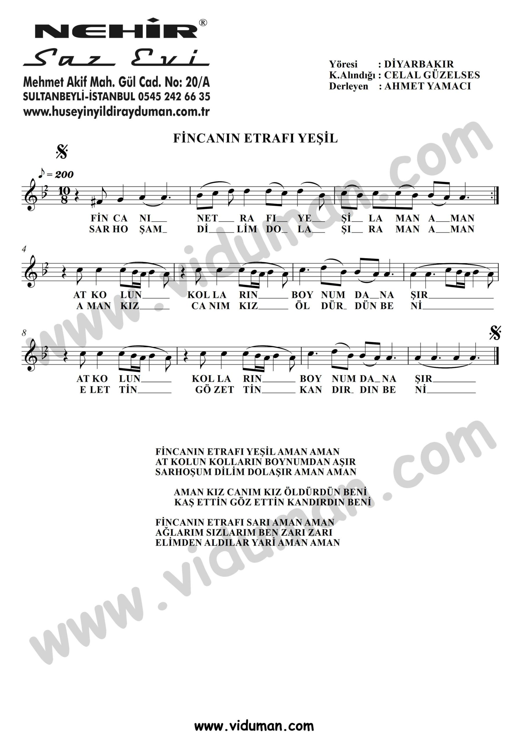 Fincanin-Etrafi-Yesil-Baglama-Saz-Notalari