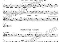 Fur Elise - 9. Senfoni-Baglama-Saz-Notalari