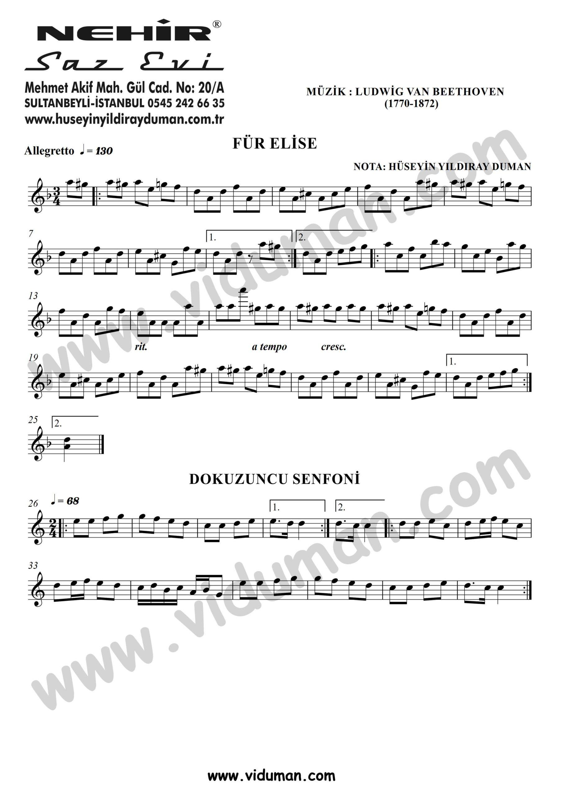 Fur Elise - 9. Senfoni
