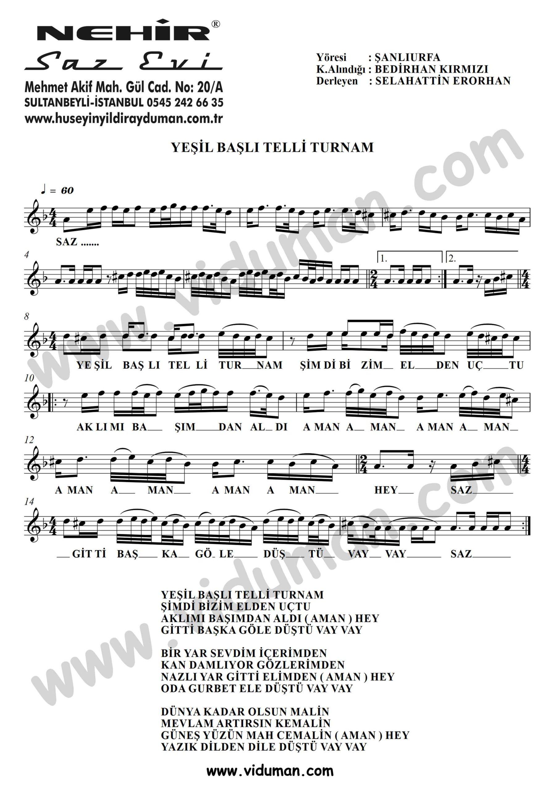 Yesil Basli Telli Turnam-Baglama-Saz-Turku-Notalari
