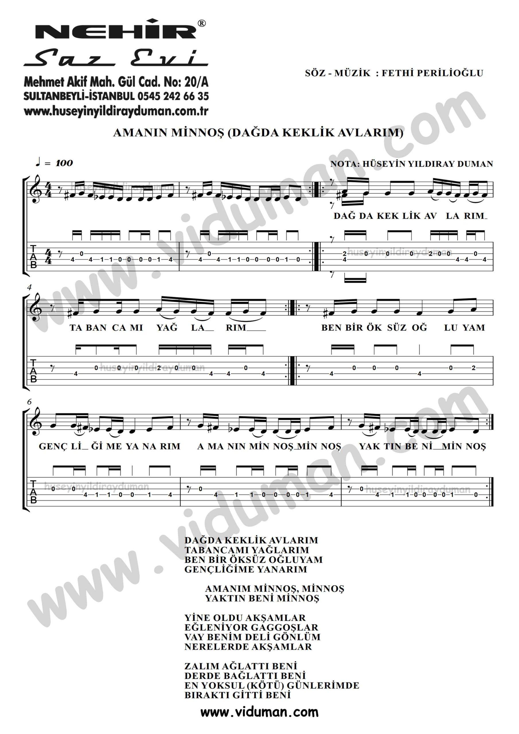 Amanin Minnos (Dagda Keklik Avlarim)-Ahmet Kaya-Gitar Tab-Solo Notalari