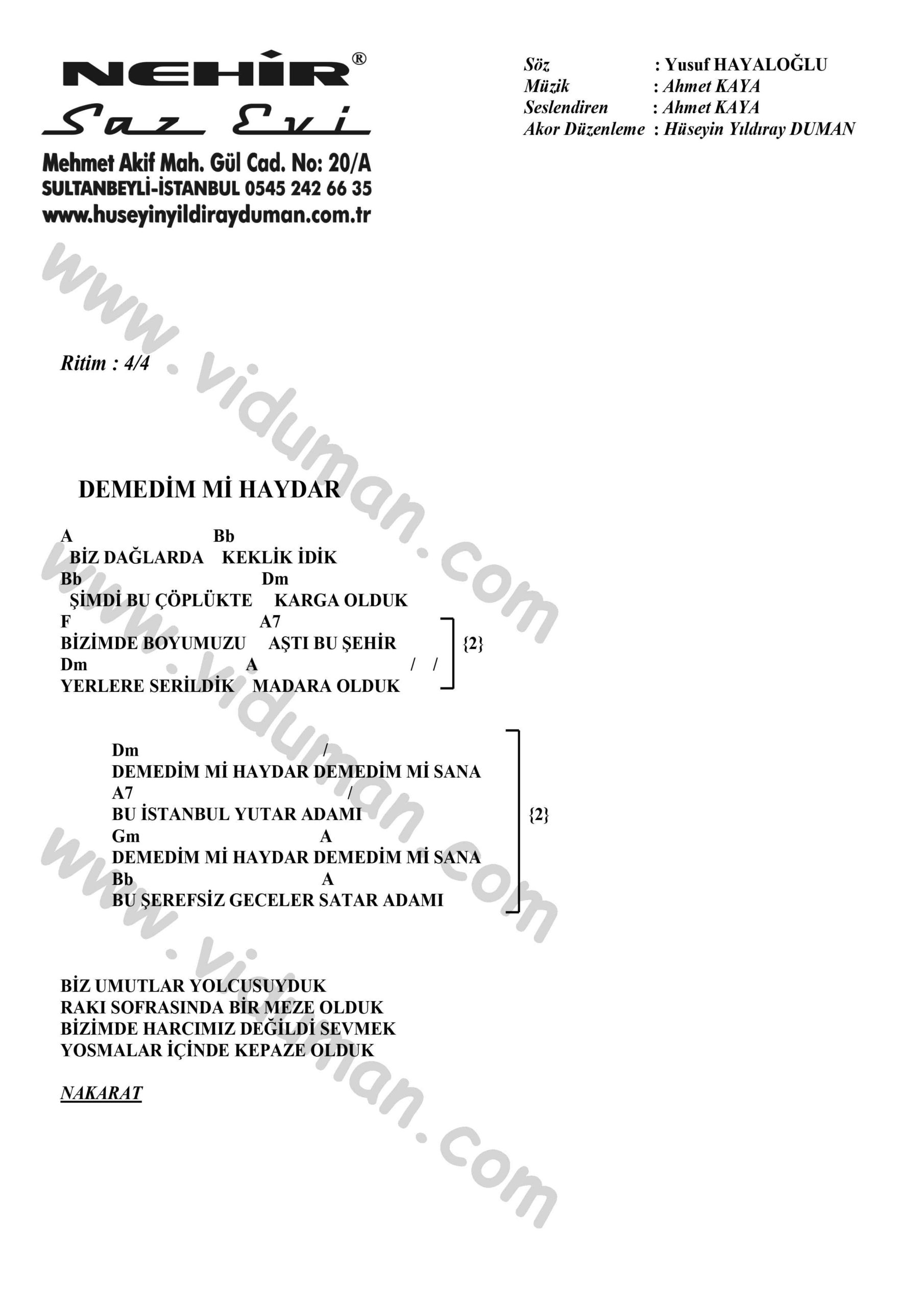 Demedim Mi Haydar-Ahmet Kaya-Ritim-Gitar-Akorlari