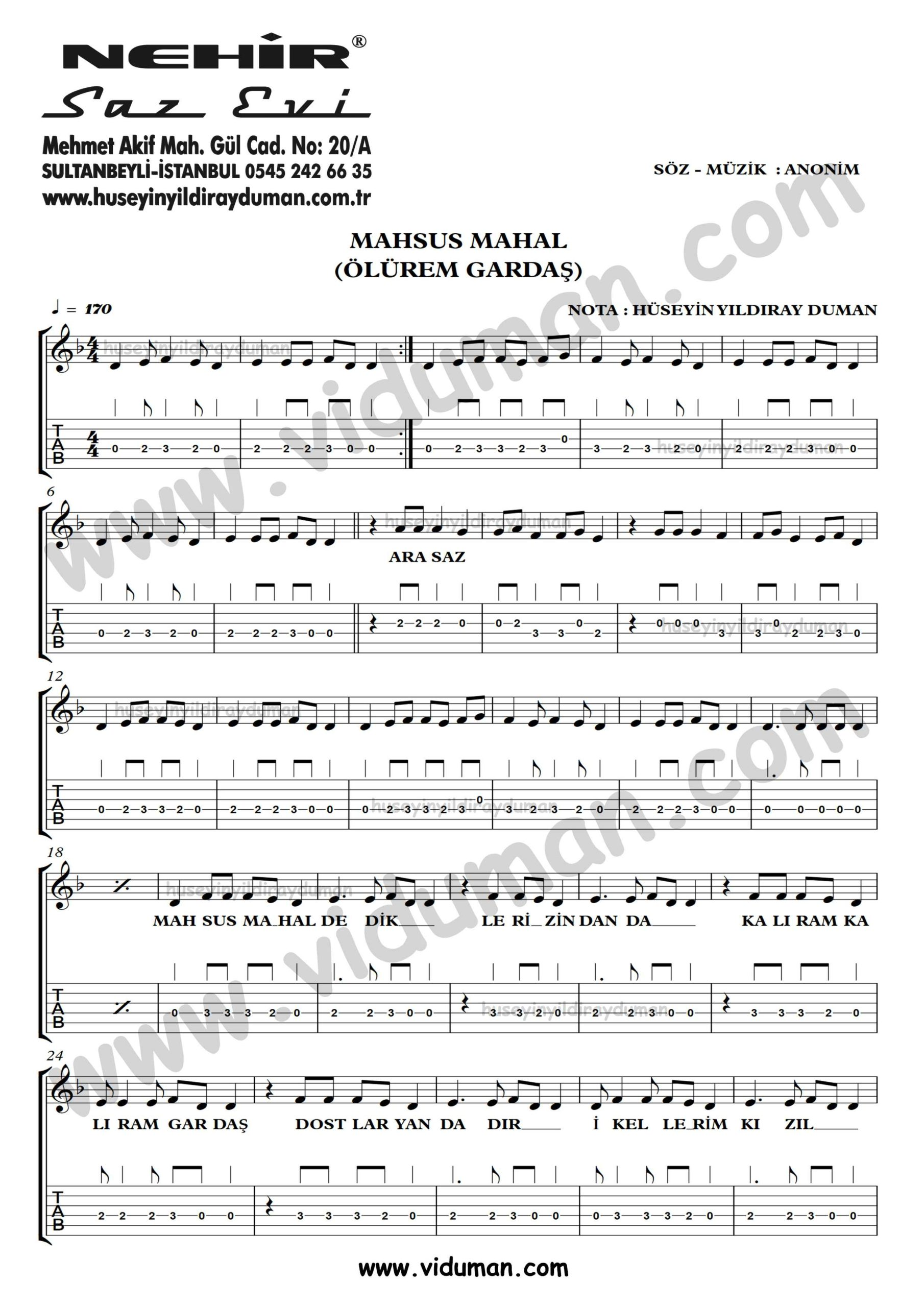 Mahsus Mahal (Olurem Gardas)_1-Ahmet Kaya-Gitar Tab-Solo Notalari