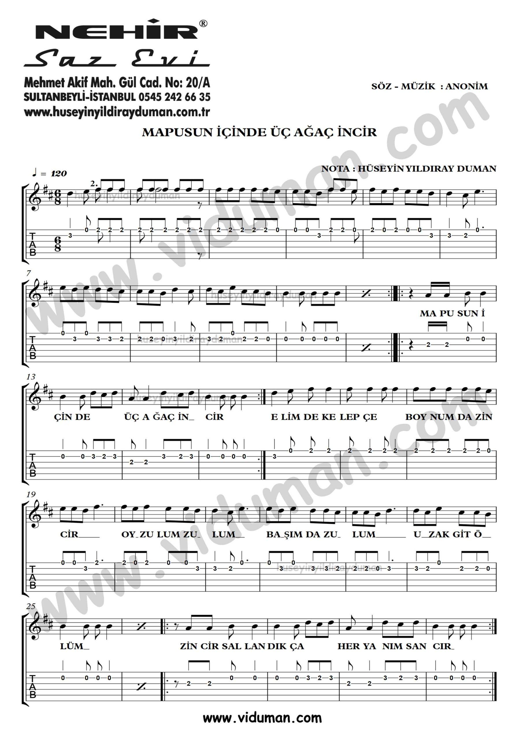 Mapusun Icinde Uc Agac Incir_1-Ahmet Kaya-Gitar Tab-Solo Notalari