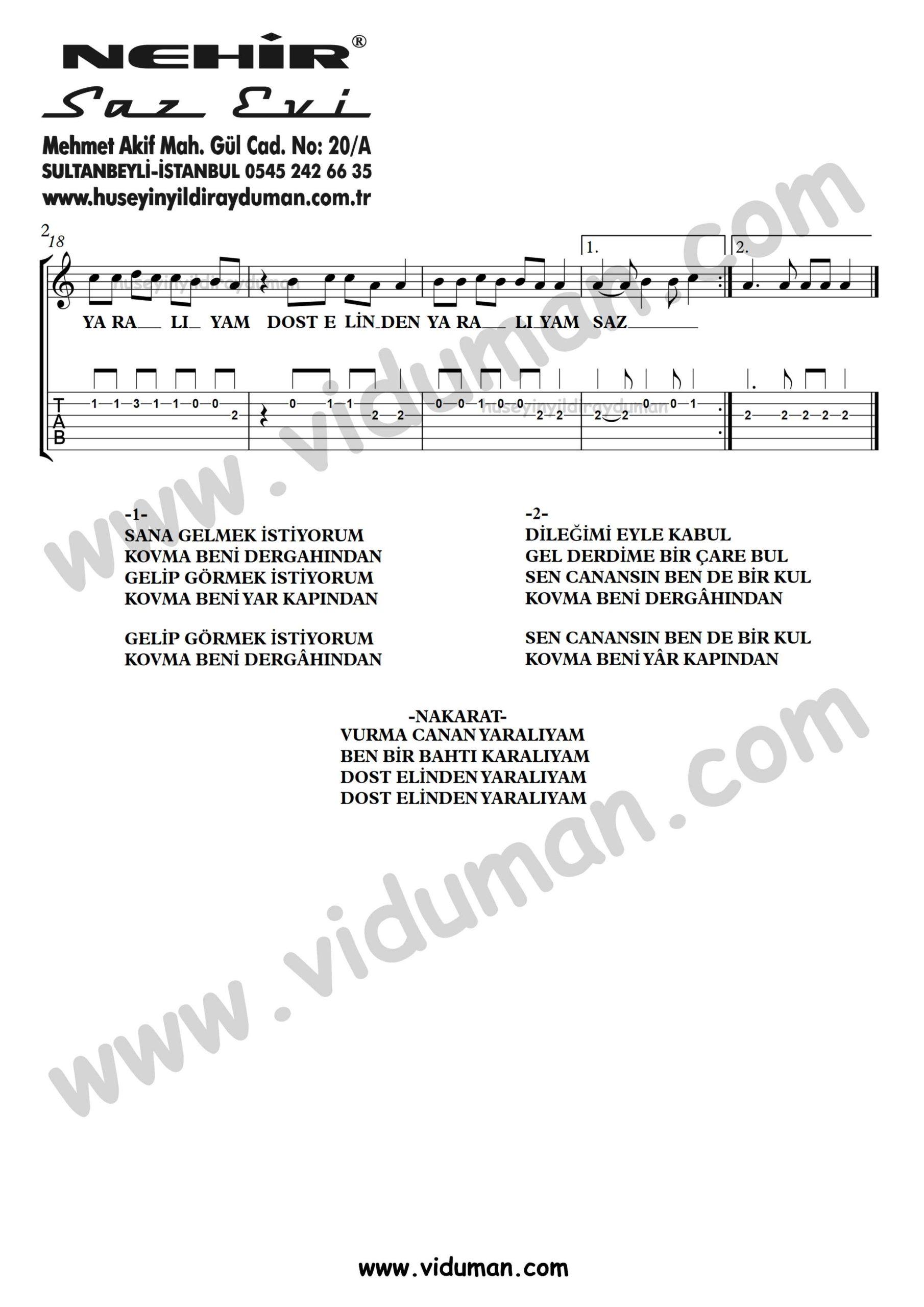 Sana Gelmek Istiyorum_2-Ahmet Kaya-Gitar Tab-Solo Notalari