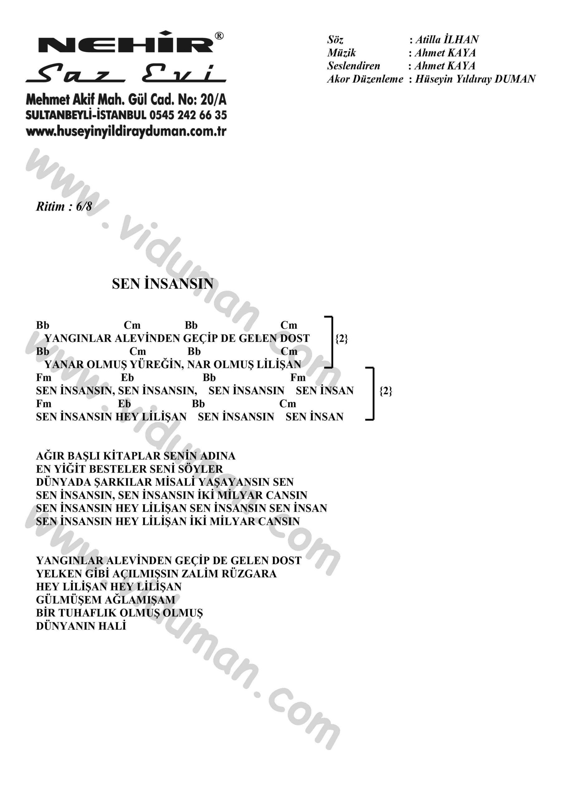Sen Insansin-Ahmet Kaya-Ritim-Gitar-Akorlari