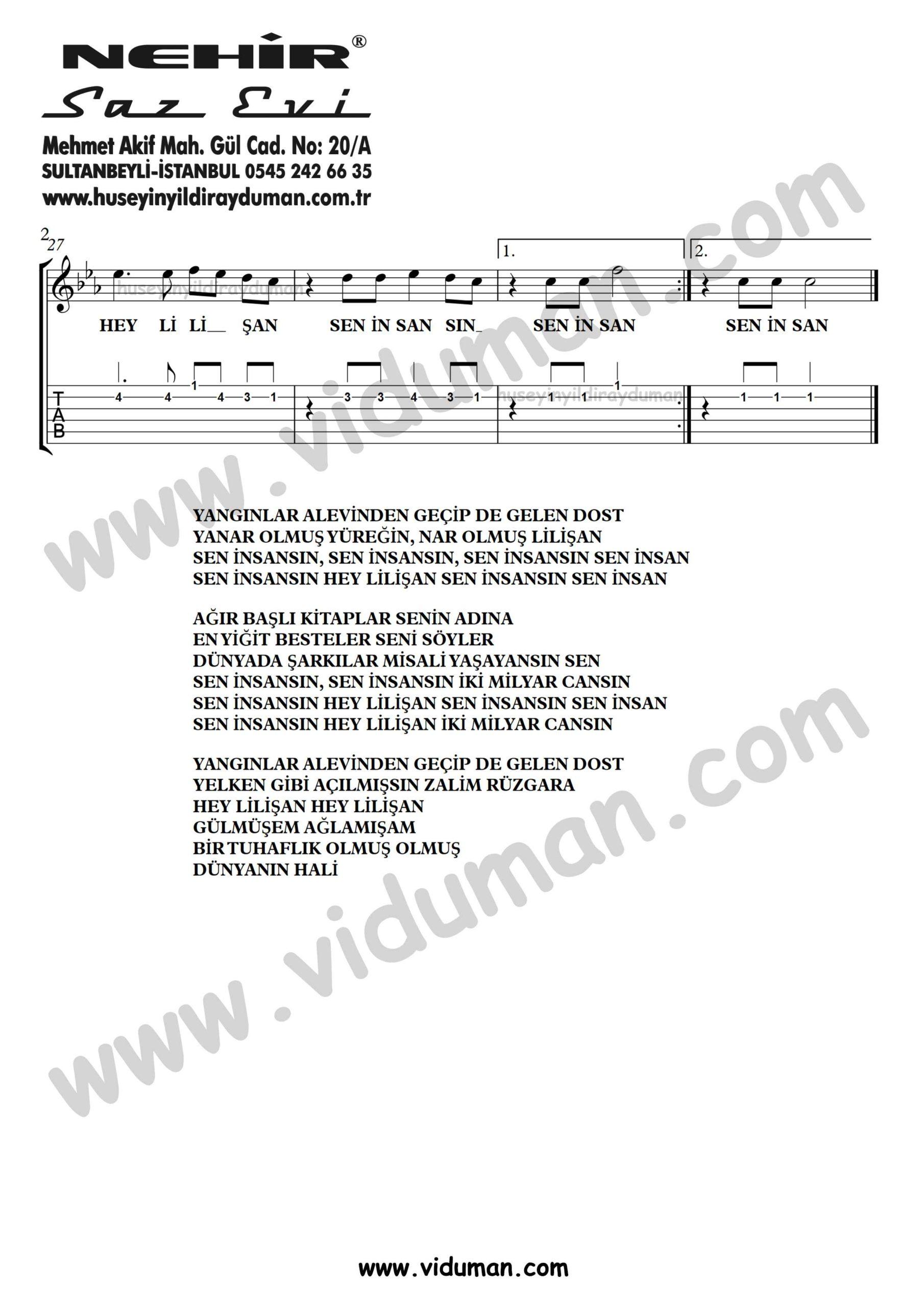 Sen Insansin_2-Ahmet Kaya-Gitar Tab-Solo Notalari