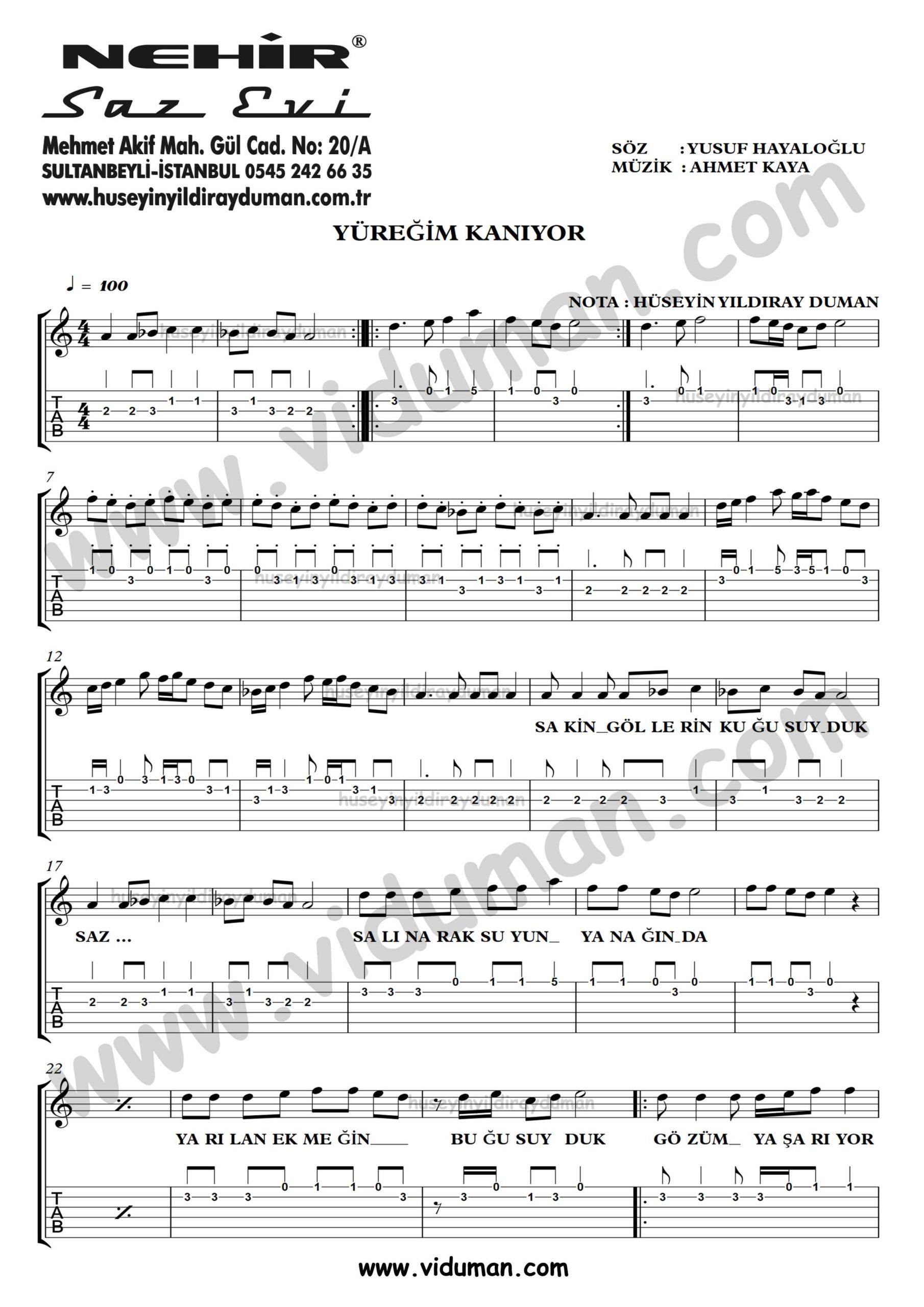 Yuregim Kaniyor_1-Ahmet Kaya-Gitar Tab-Solo Notalari