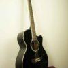 elektro_akustik_gitar_masterwork_uygun_fiyata_gitar_MWA-4000CE_7