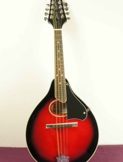 mandolin_smoky_mountain_SM60BCS_1