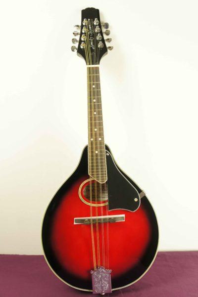 mandolin_smoky_mountain_SM60BCS_1
