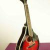 mandolin_smoky_mountain_SM60BCS_2
