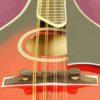 mandolin_smoky_mountain_SM60BCS_3