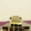 mandolin_smoky_mountain_SM60BCS_7
