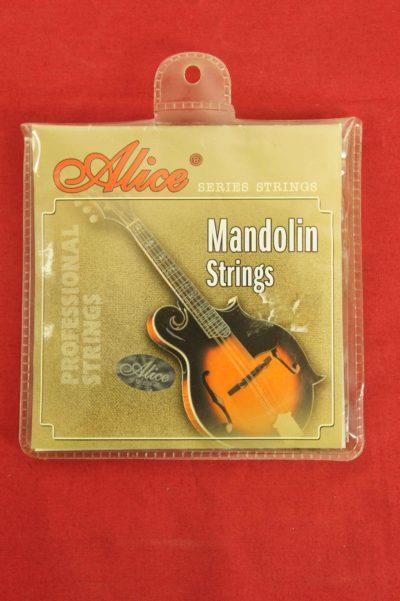 mandolin_teli_seti_alice_MS01_1
